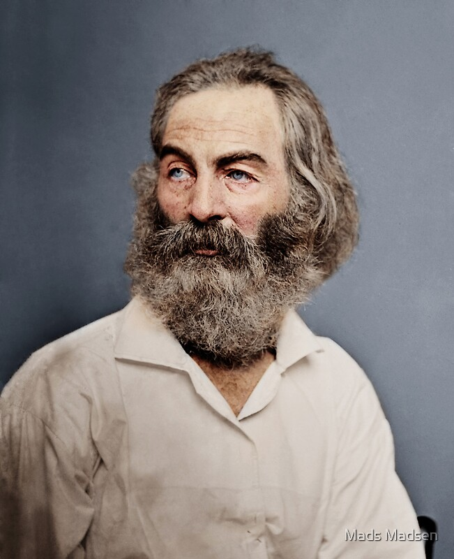 ralph waldo emerson vs walt whitman The role of nature in transcendental poetry: emerson, thoreau & whitman posted by nicole smith, dec 4, 2011 poetry comments closed print other essays and articles.