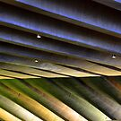 Opera House Lines by Marguerite Foxon