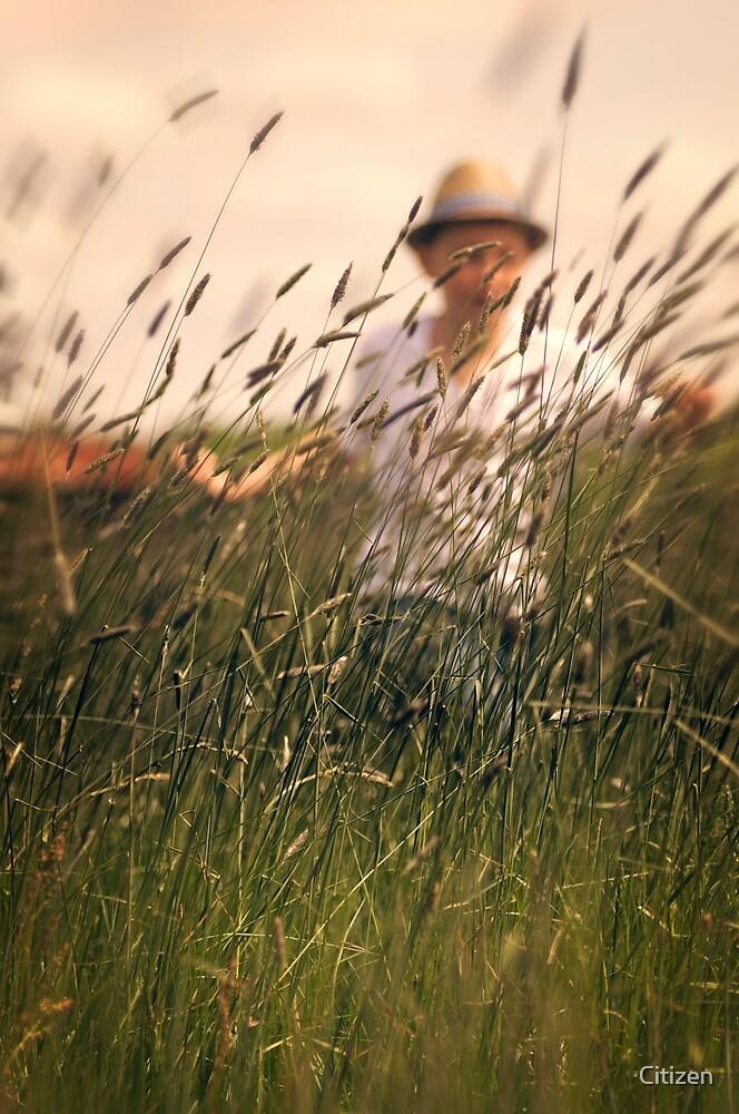 Memories of Summer by Nikki Smith (Brown)