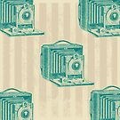 Vintage cameras by Jamie McCall