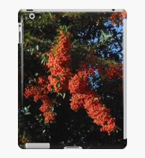 Strange Phenomenon iPad Case/Skin
