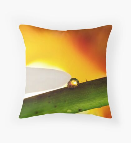 Heart of Flame Throw Pillow