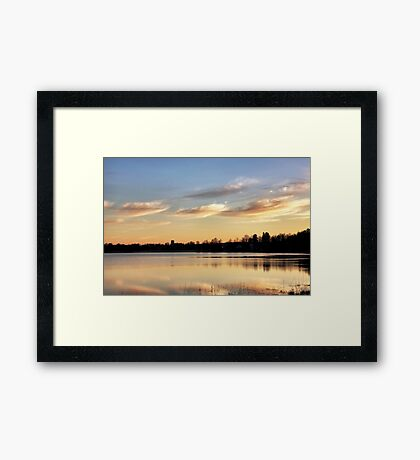 Shades of gold Framed Print