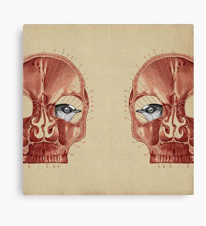 CANTO DE GOLONDRINAS COMO METAL CRUDO (vr.3) Canvas Print