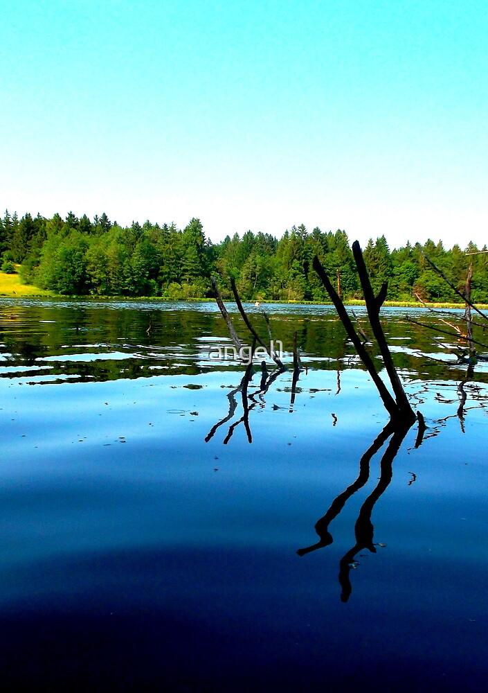 Lake Lugenau ~ Boebing by ©The Creative  Minds