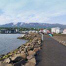 Akurery. Island by Aase