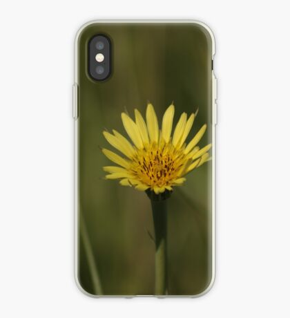 Yellow Wild Flower which I don't know the name of iPhone Case