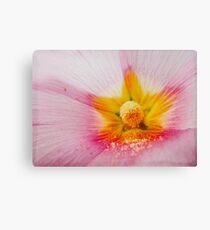 Flower inside- flor con polen Canvas Print