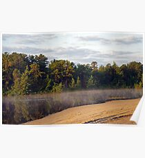 Bald Eagle Leaves Harry Wright Lake  Poster