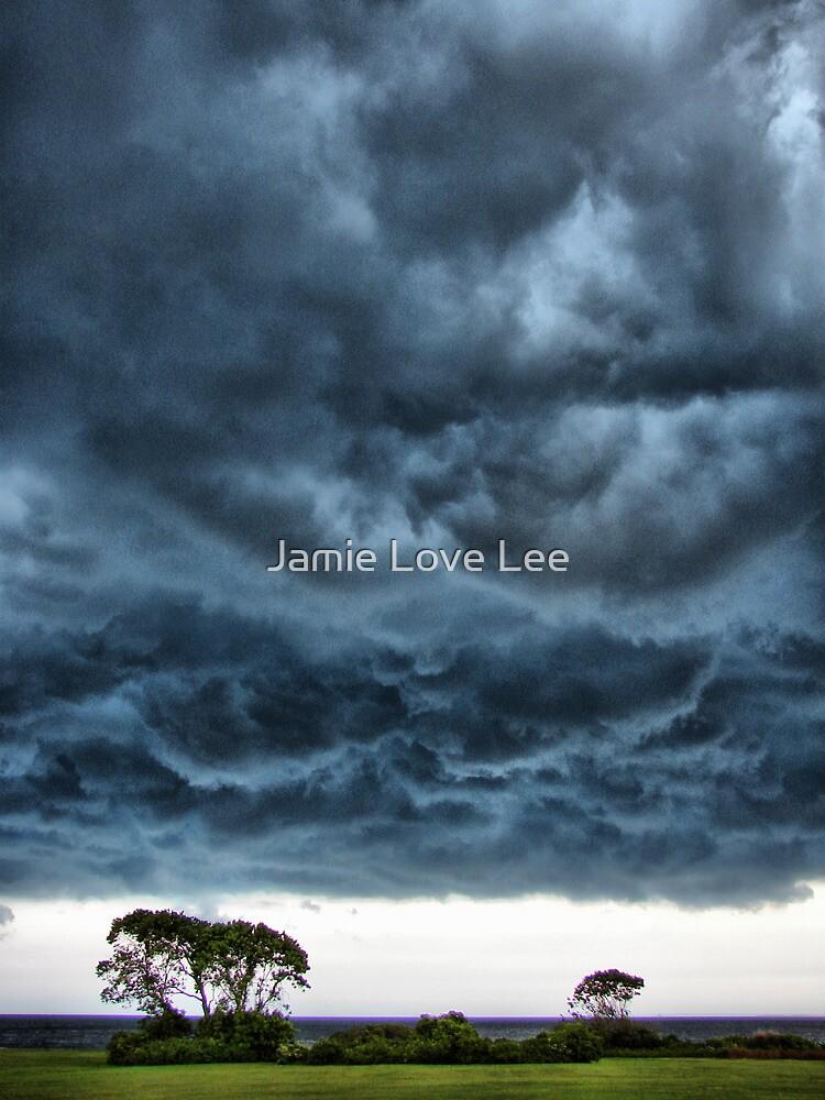 Stormy by Jamie Lee