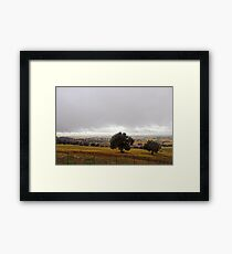 Algerian Meadows Framed Print