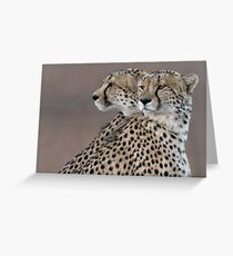 Four Eyes, The Better To Hunt  Greeting Card