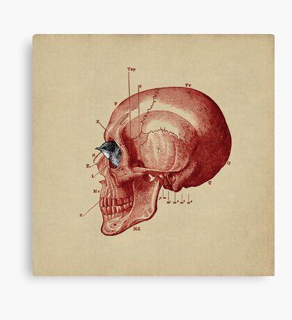 CANTO DE GOLONDRINAS COMO METAL CRUDO (vr.5) Canvas Print