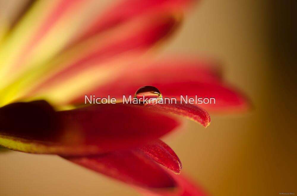 Soul Reflection  by Nicole  Markmann Nelson