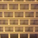 Dusk Grid 1 by armadillozenith