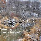 Season's Greetings From Wisconsin by wiscbackroadz