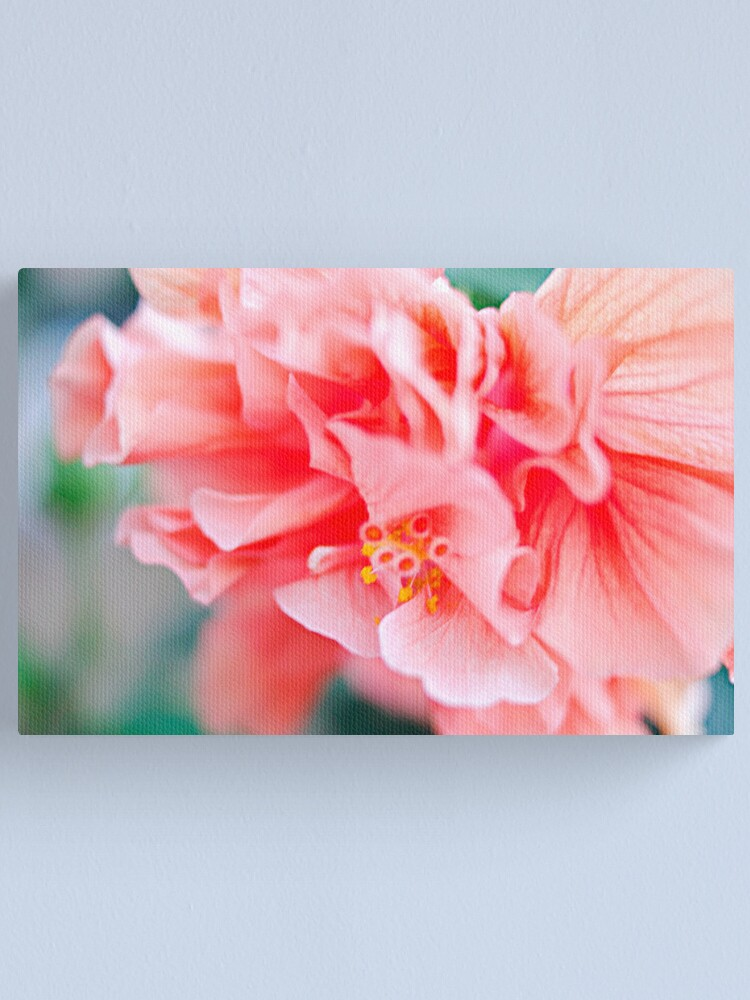 Alternate view of Double Peach Hibiscus I Canvas Print