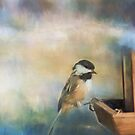 Chickadee by KathleenRinker