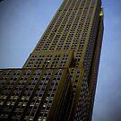 NY in 20 pics: #19 by Puchu