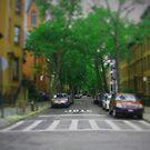NY in 20 pics: #8 by Puchu
