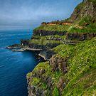 Northern Irish Coast by Adam Northam