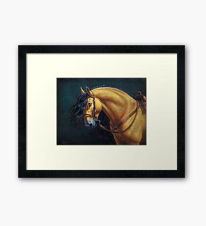 Warlander Stallion Framed Print