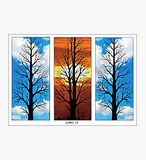 THREE TREES IN A ROW Photographic Print
