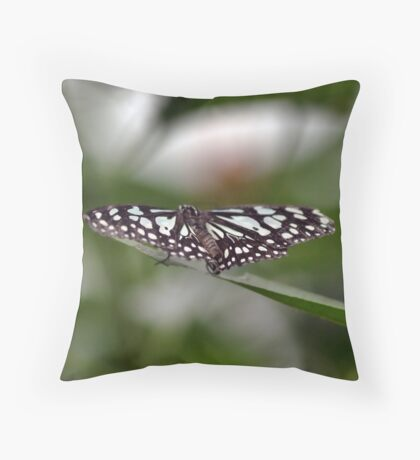 London Zoo: Butterfly Throw Pillow