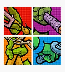 Lichtenstein Pop Martial Art Quelonians Full Set Photographic Print