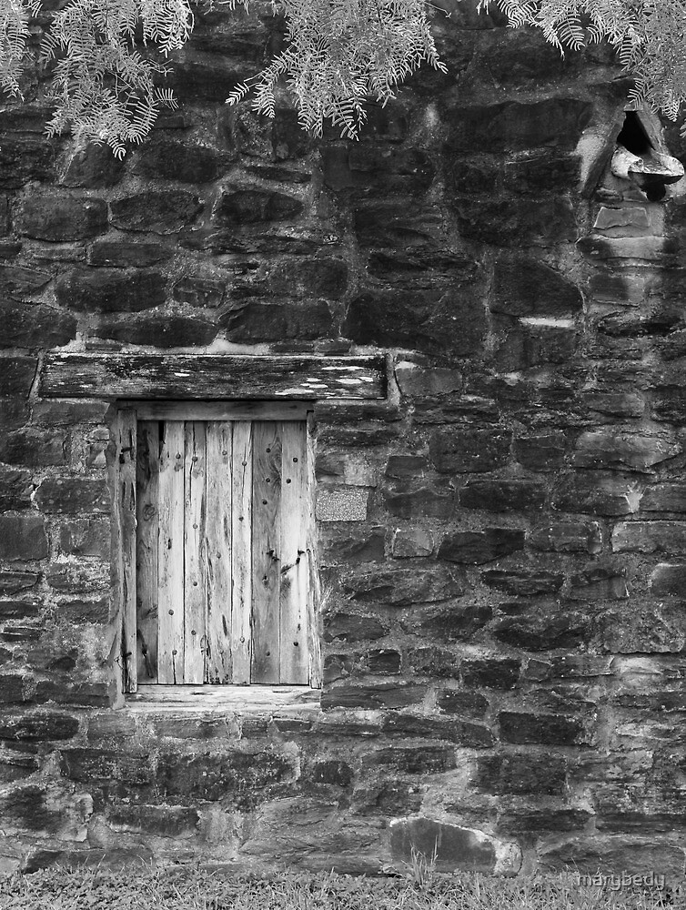 San Jose Window 2 Black and White by marybedy
