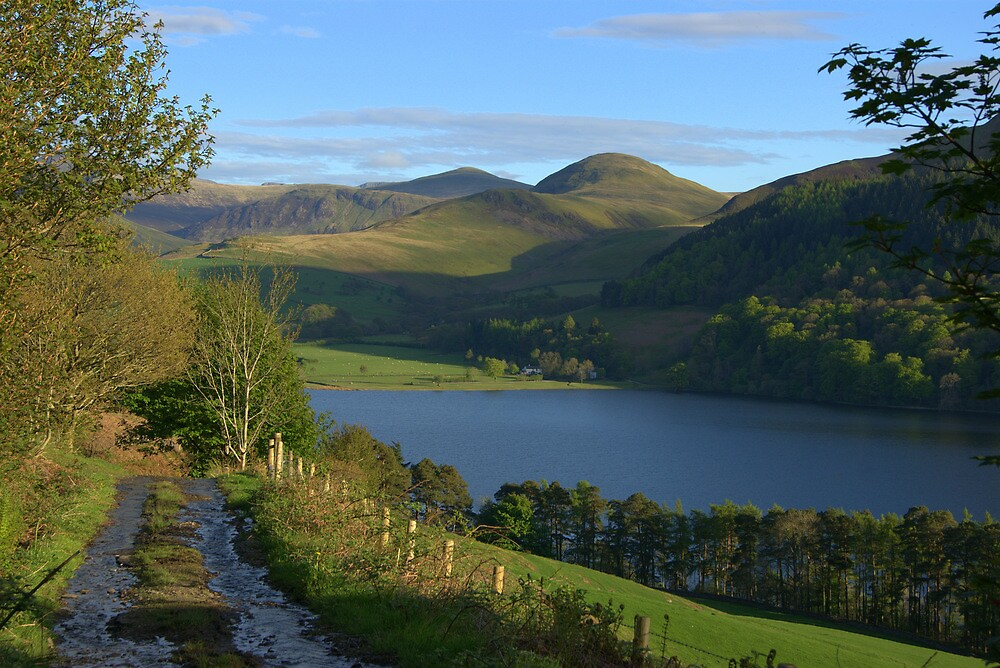Loweswater Valley by Lou Wilson