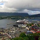 Alesund Panorama by Steve plowman