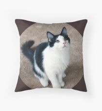 Fluffy Black and White Cat Throw Pillow