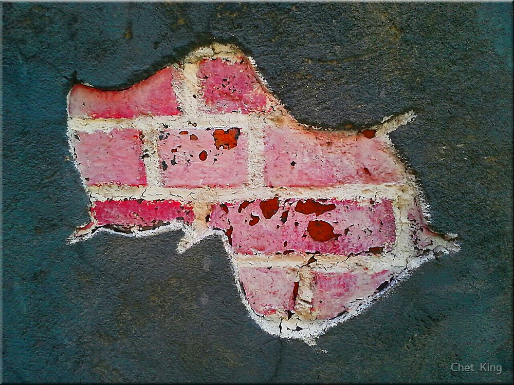 Bricks In The Wall by Chet  King