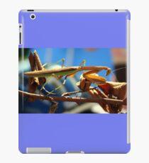 Praying Mantis on a Stick iPad Case/Skin