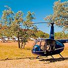 Tourist aircraft, Purnululu Airstrip, Western Australia. by johnrf