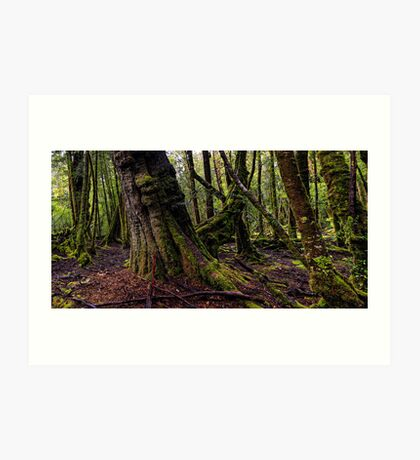 The clearest way to the Universe is through a forest wilderness Art Print