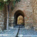 Alcazaba of Malaga by Janone