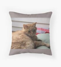 RELAXING ON THE SUN LOUNGE Throw Pillow