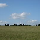 Grass, trees and sky by KatDoodling