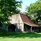 Barn In The Trees by WildestArt