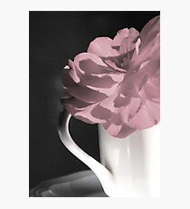 Sending A Cup Of Cheer Photographic Print