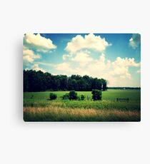 Ohio fields Canvas Print