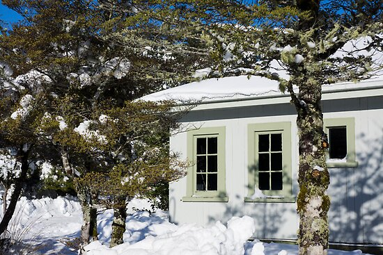 through the snow by Anne Scantlebury