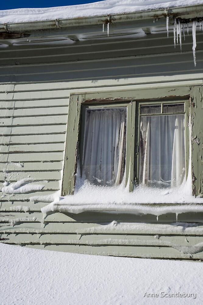 snowed in by Anne Scantlebury
