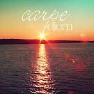 Carpe Diem by SylviaCook