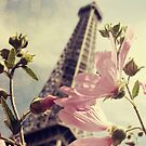 Paris Is Blooming by bohemiancouture