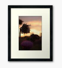 A Purple Sunset Framed Print