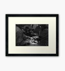 Live Birth Framed Print