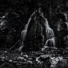 Light Within by Jeffrey  Sinnock